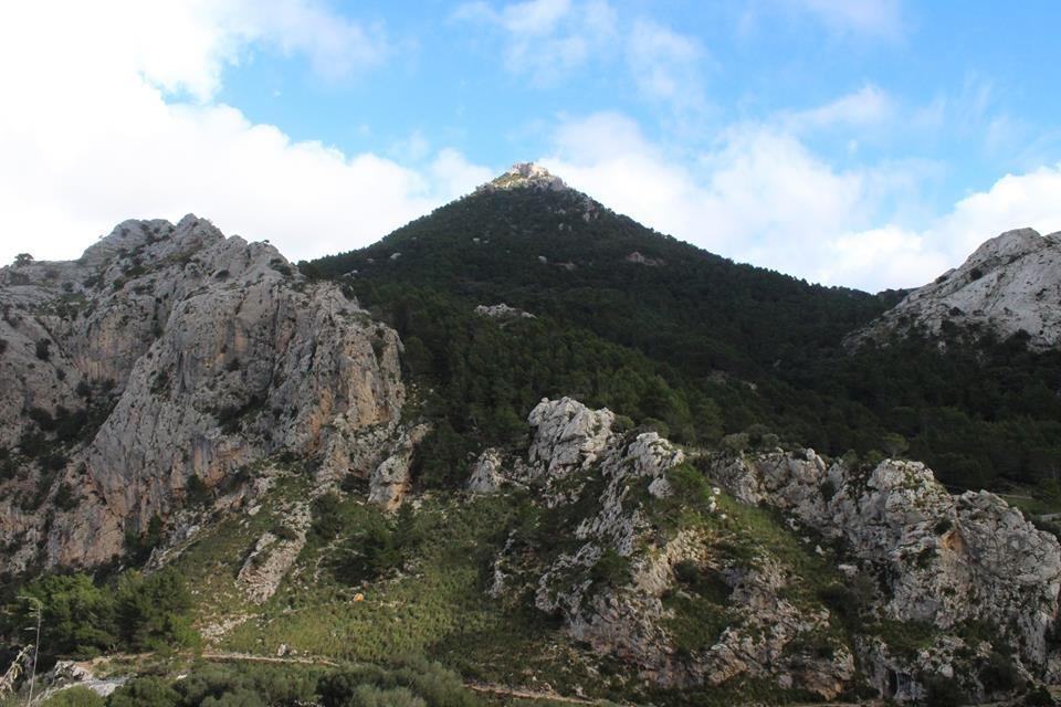 alpina6