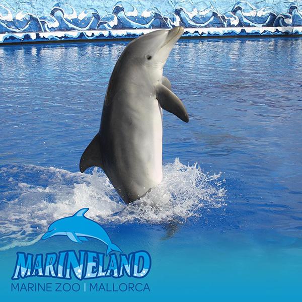 marineland-mallorca-2